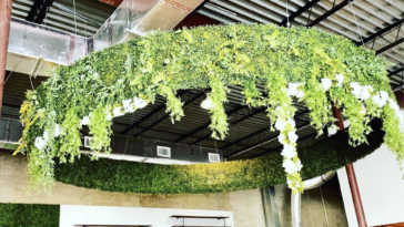 Photo of greenery hanging from the ceiling