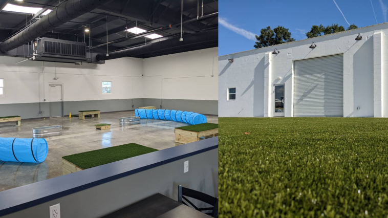 Photos of an empty indoor dog park with two blue crawling tubes