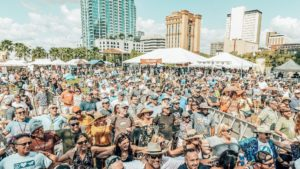 Crowd shot at a waterfront music festival