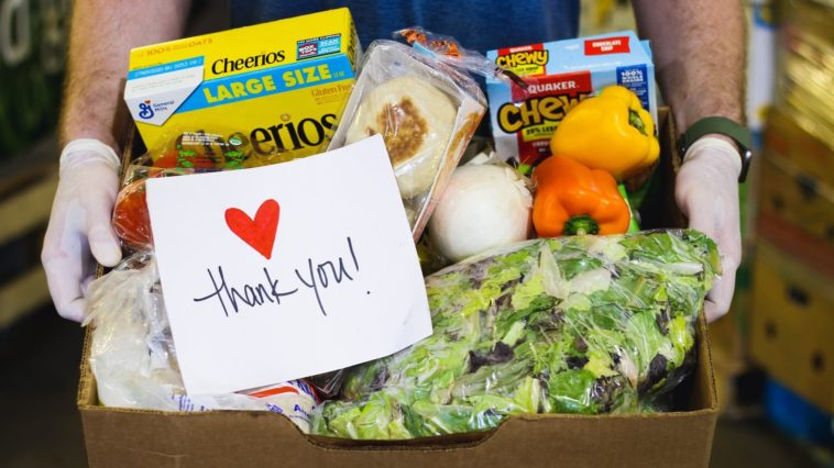 Photo of assorted foods for feeding Tampa Bay