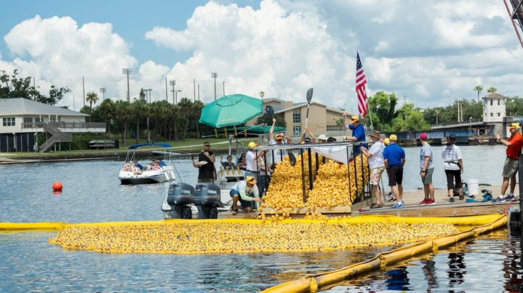 Thousands of yellow rubber ducks poured into a river