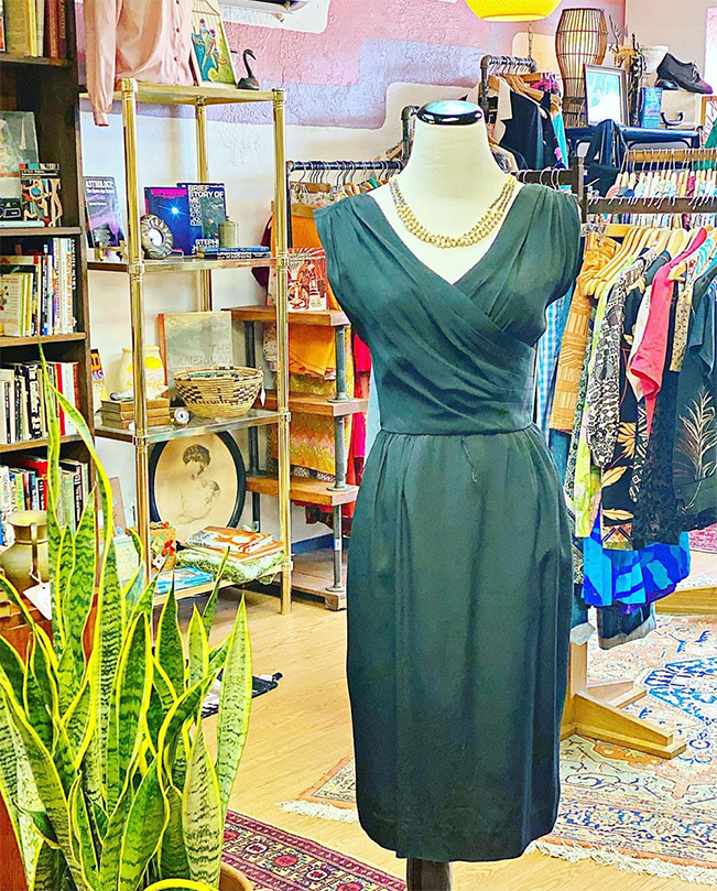 A green dress, and a snake plant with vintage clothes hung up in the background