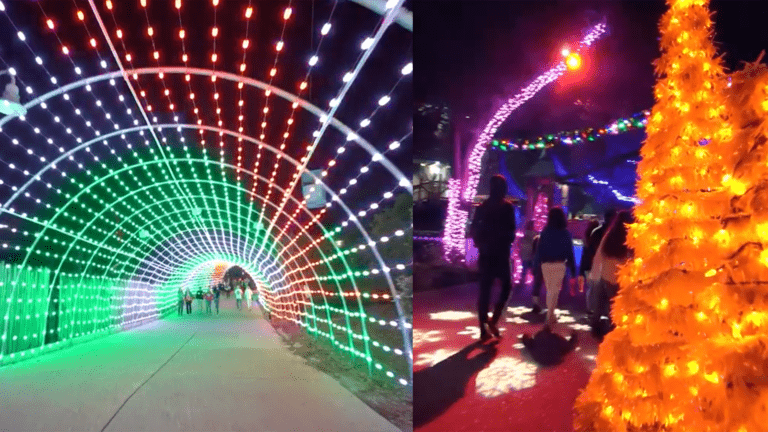 a park with huge Christmas lights display and a light tunnel
